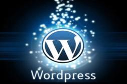 WordPress 清理神器 WP Clean Up